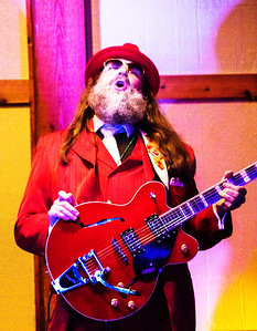 Guitar Player | Marty Sammon's Mardi Gras Fling, Harald Viking Lodge, Tinley Park
