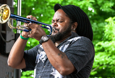Trumpet (Terrance Simien and the Zydeco Experience) | Budweiser Crossroads Stage