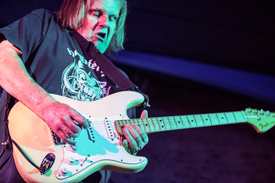 Walter Trout Band | Walter Trout
