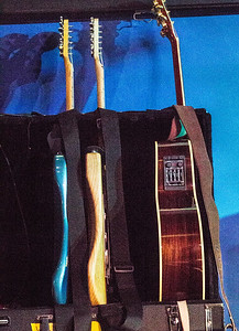 Walter Trout's guitars