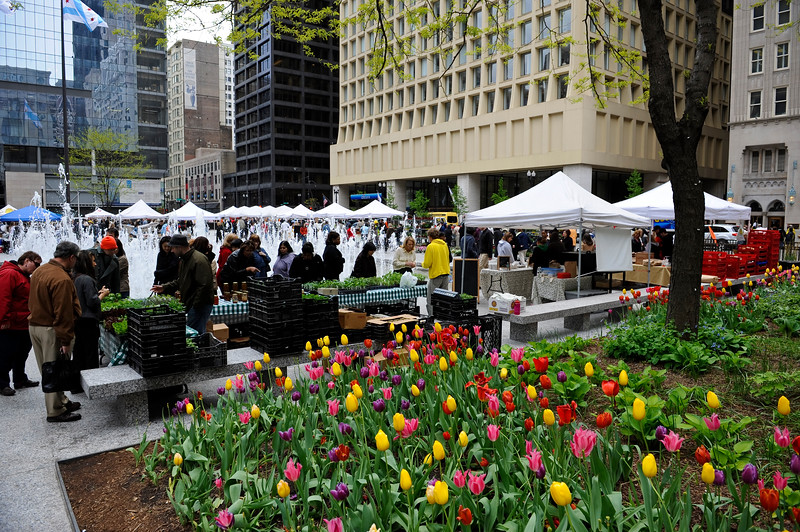 Shoppers take part in the annual Farmers Market in Daley Plaza