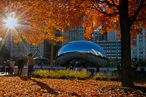 Autumn At The Bean