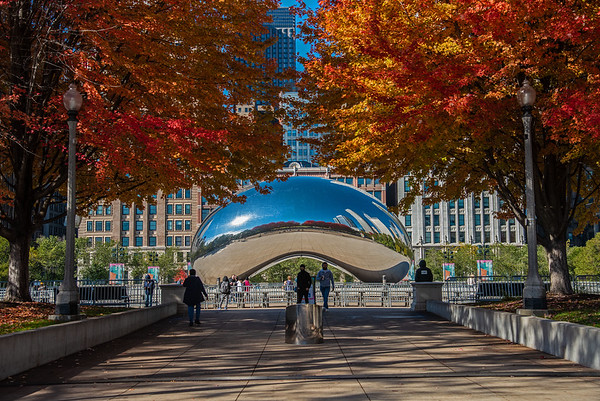 The Bean In Autumn, 2020