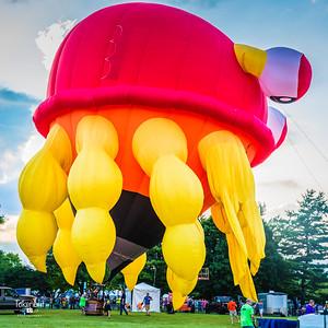 Balloons Eyes to Skies '17 LR-5098