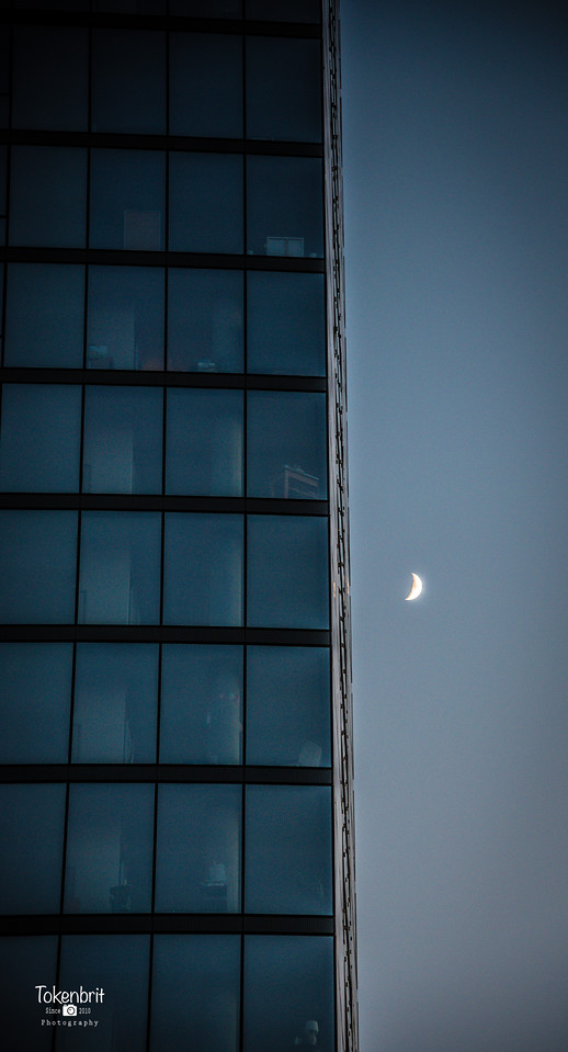 Moon Downtown Chicago LR-8743