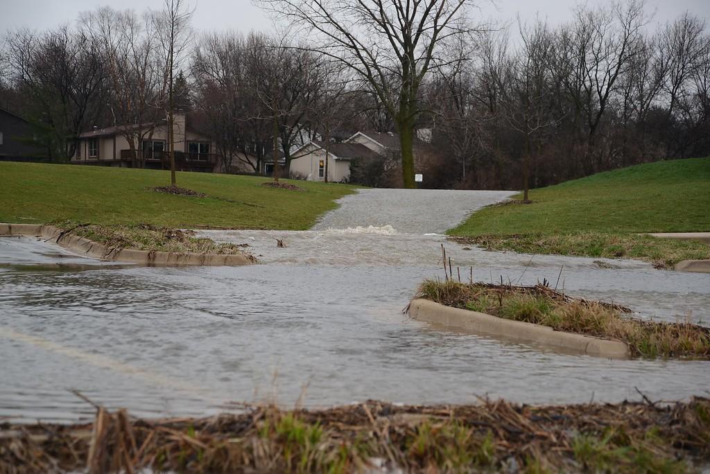 A River Runs Through it - Woodglenn Park Lisle IL