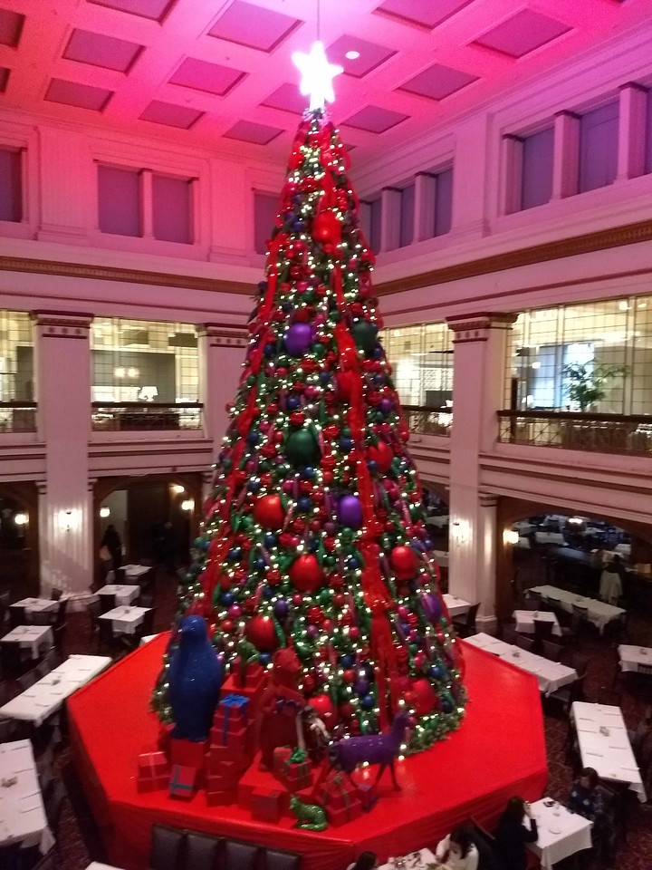 07 The Great Tree in the Walnut Room