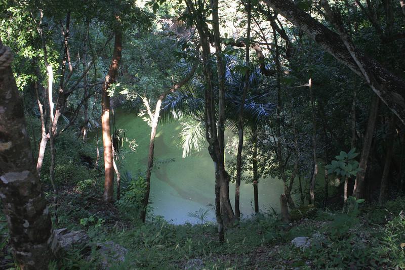 The Xtoloc Cenote
