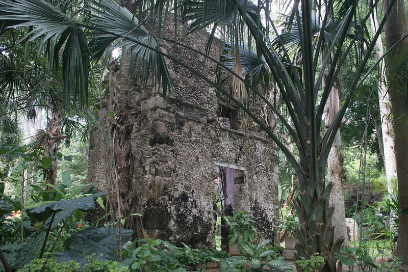 Some of the early hacienda buildings have been taken over by the forest.