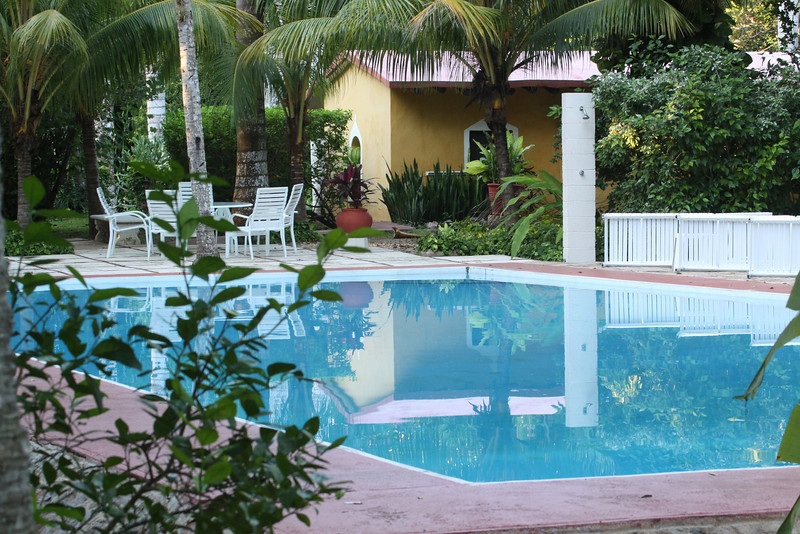The large shady swimming pool