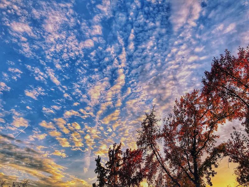 Highway 32 Chico California at Sunset