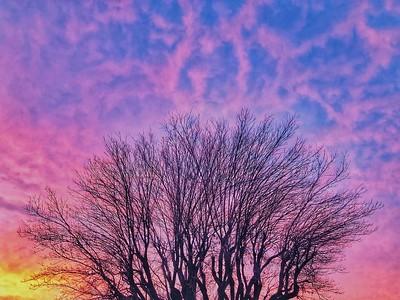 Sunrise near Lower Bidwell Park Chico, California