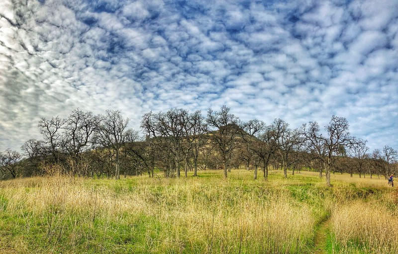 Upper Bidwell Park, Chico California