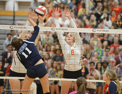 Chico High's Adair Hotmer goes up for the block against Pleasant Valley's Cheyenne Wilson Thursday October 5, 2017 at Chico High School in Chico, California. (Emily Bertolino -- Enterprise-Record)