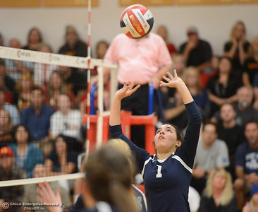 Pleasant Valley's Makenna Joyce sets up the spike against Chico High Thursday October 5, 2017 at Chico High School in Chico, California. (Emily Bertolino -- Enterprise-Record)