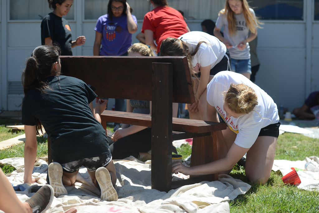 . Chico High students build birdhouses to pay for Sober Grad Night., May 18, 2018,  in Chico, California. (Carin Dorghalli -- Enterprise-Record)