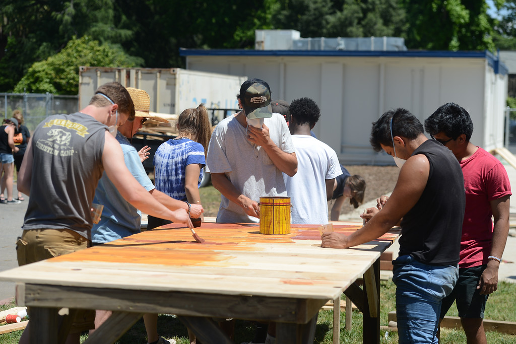 . Chico High seniors stain a wood table, May 18, 2018,  in Chico, California. (Carin Dorghalli -- Enterprise-Record)