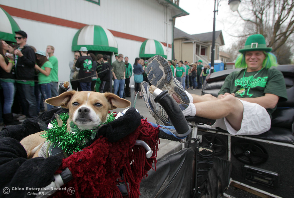 . Mike Griffith waits with his pedicab to give people rides who  celebrate St. Patrick\'s Day festivities outside of Riley\'s bar in the south CSUC campus area and Downtown Chico Thursday , March 17, 2011 in Chico, Calif.