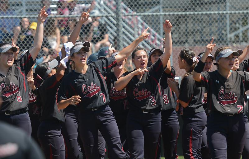 The Chico State softball team celebrates Karli Skowrup's homerun, April 14, 2018, in Chico, California. (Carin Dorghalli -- Enterprise-Record)