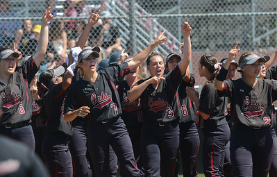 The Chico State softball team celebrates Karli Skowrup's homerun, April 14, 2018, in Chico, California. (Carin Dorghalli -- Enterprise-Record)
