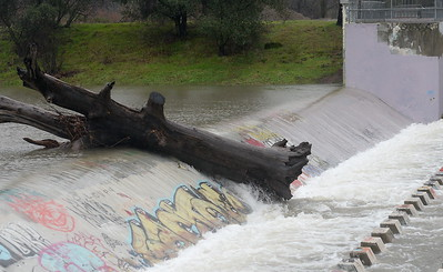 Not quite enough water just yet to get a large log to spill over the diversion dam on Lindo Chanell in Chico, Calif. as the storm continues to roll through Butte County in northern Calif. Tues. Jan. 10, 2017. (Bill Husa -- Enterprise-Record)
