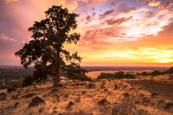 Sunset from North Rim Trail, Upper Bidwell Park, Chico, CA