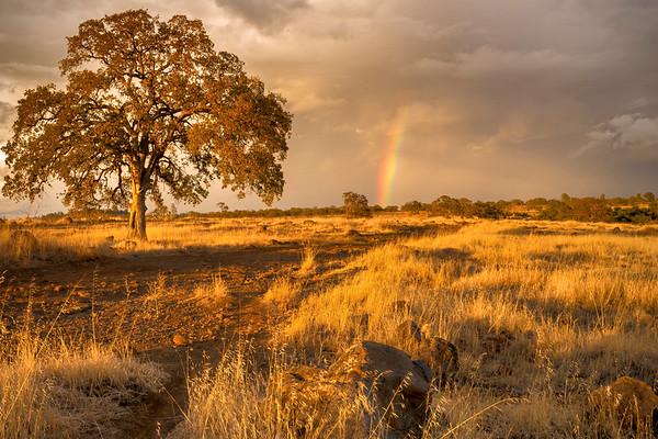 Rainbow at Sunset, North Rim Trail, Upper Bidwell Park, Chico, CA