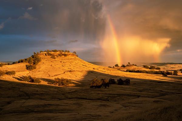 Summer Rain near Butte College, Chico, CA