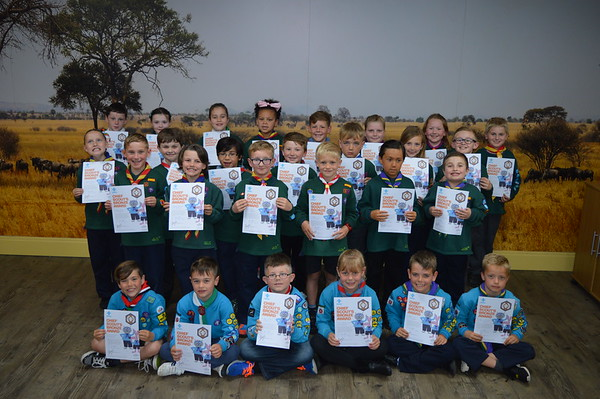 Beavers - Chief Scout Bronze Awards 2017