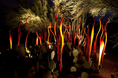 Chihuly Exhibits