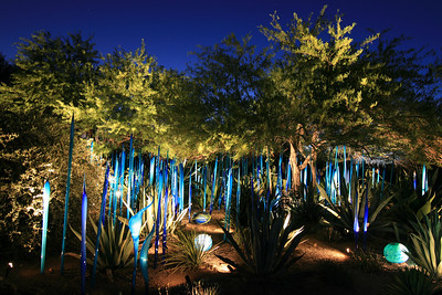 Chihuly 5/15/2009