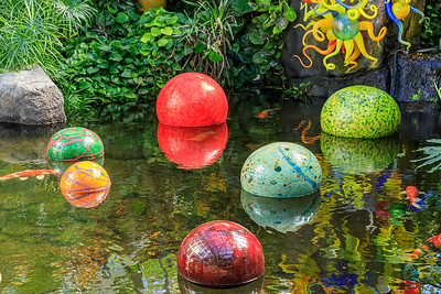 Koi With 'Niijima Floats' By Dale Chihuly