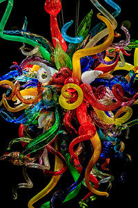 Chihuly Glass At The Chihuly Collection In St. Petersburg FL