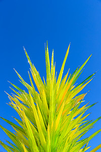 'Lime Green Icicle Tower' By Dale Chihuly