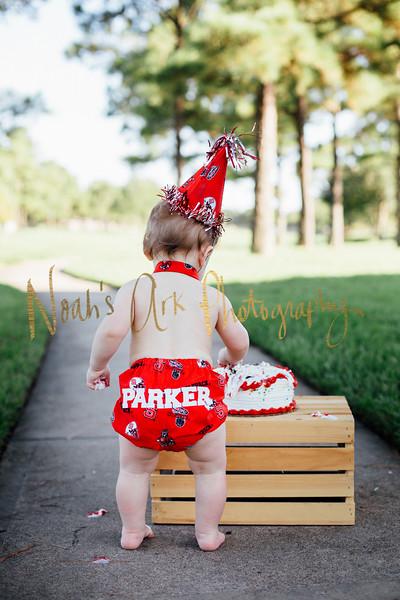 Parker | 1 year Cake Smash