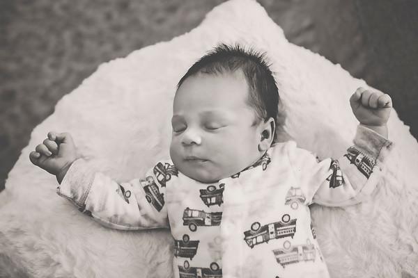 Berwyn IL // Newborn // Zachary Benaiah