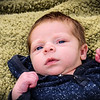 Newborn Photo on Green Blanket