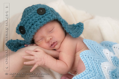 Newborn Portraits by 147th Street Studio 51360
