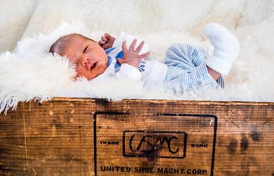 Lindseys babys pictures 12-6-2016-6