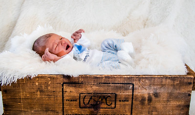 Lindseys babys pictures 12-6-2016-7