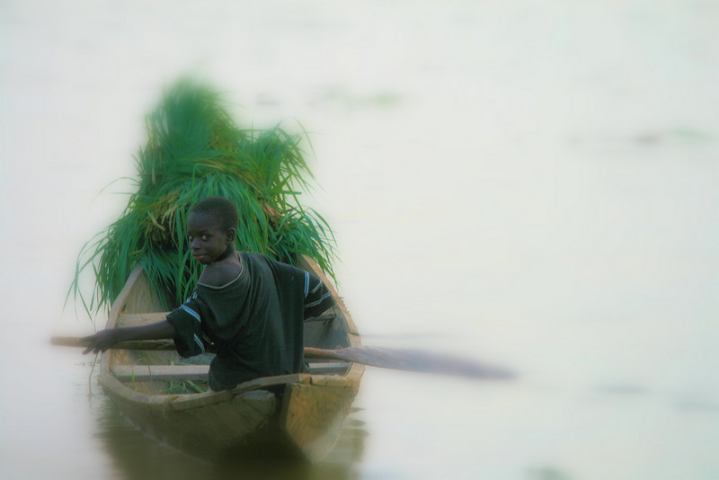 """Taken on the river Nile, while waiting in Remote Nigeria for teh ferry to cross. All Money from sales of my art goes to help extreme poor adn sick in remote and rural villages.<br /> Please visit: *""""http://www.philadelphia33.org/*"""" <a href=""""http://www.philadelphia33.org/"""">http://www.philadelphia33.org/</a>"""