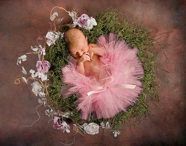 Claire_Floral Baby Bird Nest