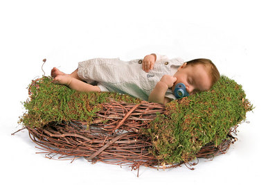 Vine Wreath Nest peyton