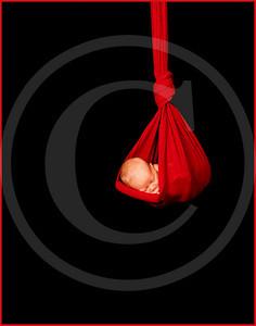 2118_110810_185533_7DL_LR hanging baby