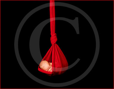 2120_110810_185538_7DL_LR hanging baby