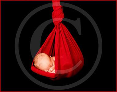 2118_110810_185533_7DL_LR hanging baby 14x11