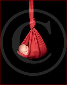 2125_110810_185618_7DL_LR hanging baby