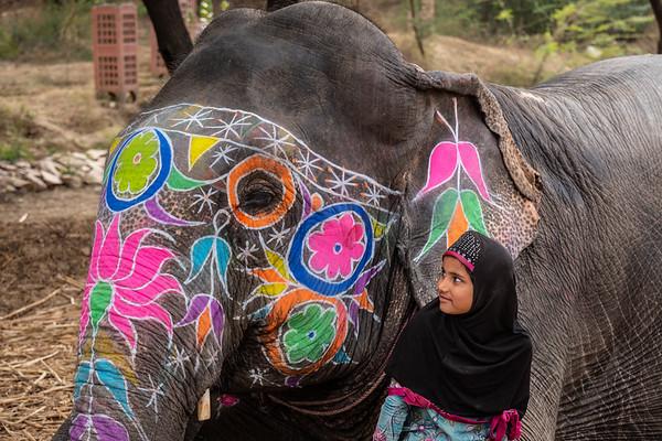 2019, India, Hathi Gaon