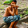 A boy in the village of Santarem, Amazon River, Brazil, shows off his pet parrot.