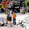 A boy enjoying the birds at Plaka Catalunya, Barcelona, Spain.